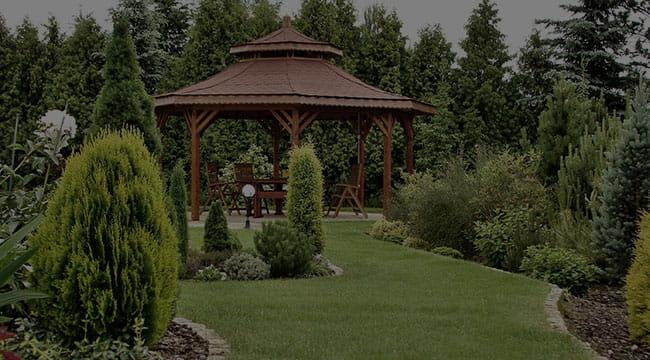 Lyndhurst Garden Design